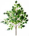 artificial verde hojas de betel