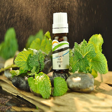 Buy Free Sample Fresh Chinese Peppermint Essential Oil Prices Liquid Mint Wholesale In Alibaba