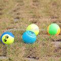 البلاستيك كرة التنس 2014 الجملة للكلاب