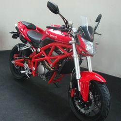 300cc kids gas red mini dirt bikes (WJ300)