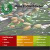 Cocoa Cocoa Powder Cocoa Powder Bulk/Pure Cocoa Powder