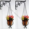Sage Solemn Beautiful Garden Flowering Hanging Planters