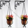 Sage Solemn Beautiful Garden Flowering Hanging Planters