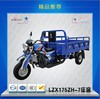 150cc/175cc/250cc motorcycle for cargo with loading capacity 2T