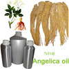 100%natural organic angelica root oil- by CO2 Extract