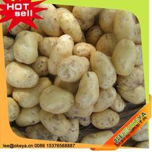 Okeya Plant Base sweet potato flake