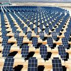 50W monocrystalline good after sale service wholesale price solar panel