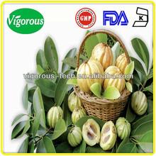 garcinia cambogia extract 80% hydroxycitric acid/ raw material garcinia cambogia extract/ hydroxycitric acid