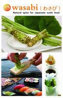 hot sushi wasabi powder/wasabi sauce mixing wasabi