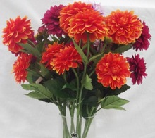 decorative fresh cut flower chrysanthemum in china for wholesale