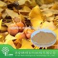 Hoja de ginkgo biloba extracto de ginkgo flavona glucósidos 24% honesto de los proveedores