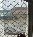 Les mouches stop. forte et à faible prix de dépistage fenêtre/fabricant professionnel/tuosheng fanctory hebei