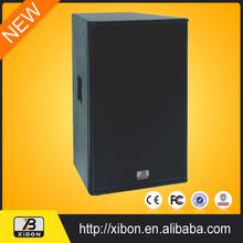 Professional 2 way 21 inch speaker
