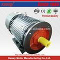 Kwy2 ardilla- jaula eléctrica de ca 3 2hp de fase del motor eléctrico