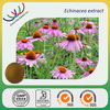 free sample HACCP KOF-K FDA GMP certified China supplier UV100% natural professional sale 4% echinacea polyphenol