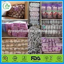 Chinese organic normal new crop fresh garlic supplier supplier