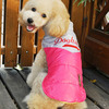 Cool dog clothing, good quality pet outwear made in China, leather vest