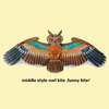 flying bird kite , bamboo craft from allen