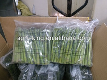 High quality IQF & frozen green asparagus
