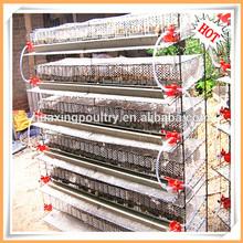 Quail breeding cages/cages of quails/metal quail cage