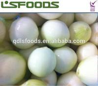 2014 Fresh whole peeled onion