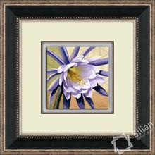 55x55cm Desert Bloom Modern Crystal Arts Decoration Picture Of Frame 2