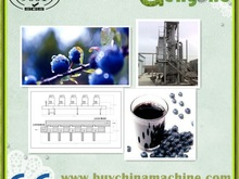 commerical blueberry juice/ jelly / jam/ processing line