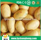 2014 hot sale fresh potato