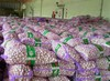 Bulk Garlic for Sale from China with Best Price