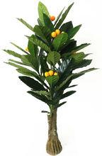 Venta al por mayor de frutas nombres indio