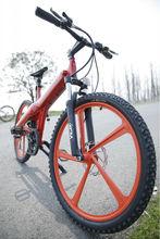 hub spokes integration design,direct factory CE / EN15194 hot sale sport Electric Bicycle
