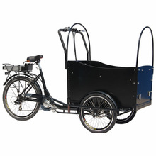 250w brussless motor 36v lithium battery electric front loading cargo tricycle