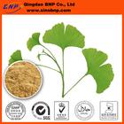 Ginkgo biloba P.E.Capsule Extract from Ginkgo Biloba for Medicine