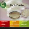 2014 Natural Garlic,Allicin Garlic,Bulk Garlic Powder