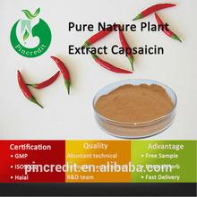 GMP Factory Supply Capsaicin Extract Capsaicin Cream