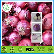 2014 Organic Red Onion Wholesale Price