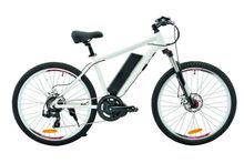 Electric Bike Motor Mid Drive - TDE07Z