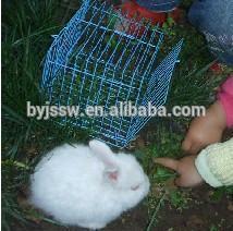 Pet Cage Rabbits