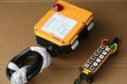 12 button F24 series radio remote control unit