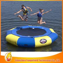 Large tiger giant adult inflatable slide for super wonderful fun