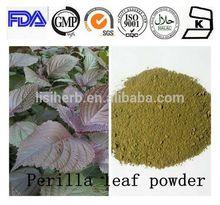 manufacture provide pure natural Alfalfa Saponins