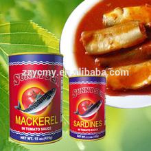 tin cans wholesale geisha mackerel fish in tomato sauce