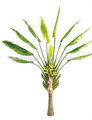 artificial paisajismo de la hoja de la planta de plástico planta de banano banano artificiales decoración del árbol
