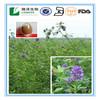 plant extract Medicago sativa Alfalfa Saponins 5%