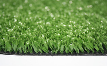 Hockey Sport Grass