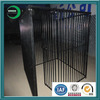 Large double dog kennel dog exercise yard fence