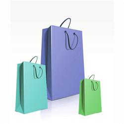 Customize Luxury Wine Bottle Gift Paper Bag