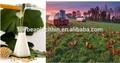 lecitina de soja aceite de aditivos para piensos animales