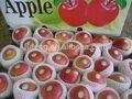 cedo maduro royal gala apple com boa qualidade