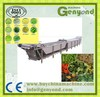 IQF frozen fruits /strawberry / raspberry / cherry processing line